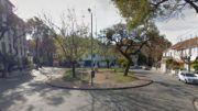 Barrio Rawson, Agronomía