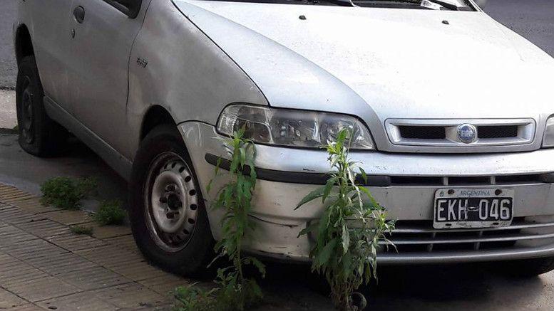 auto-abandonado-2