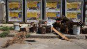Residuos, escombros y restos de un árbol