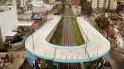 Puente Argerich, Flores