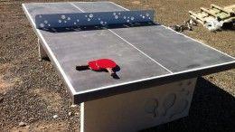 Mesas de ping-pong, en plazas y parques